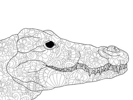 Krokodilkopf, der Antistress färbt, schwarze Linien und weißen Hintergrund zeichnet. Natur, Blumen. Vektor