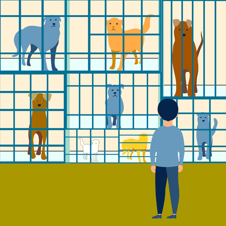 The boy chooses a dog in an animal shelter flat. In minimalist style. Cartoon Vector Illustration