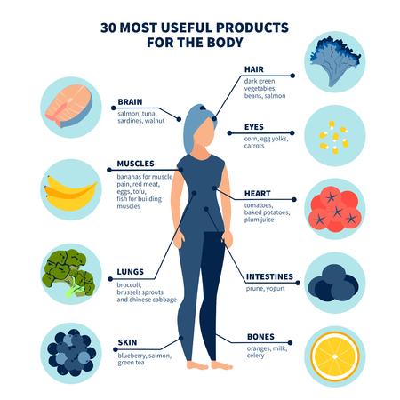 Die dreißig gesündesten Produkte für den Körper. Im minimalistischen Stil Cartoon flacher Vektor