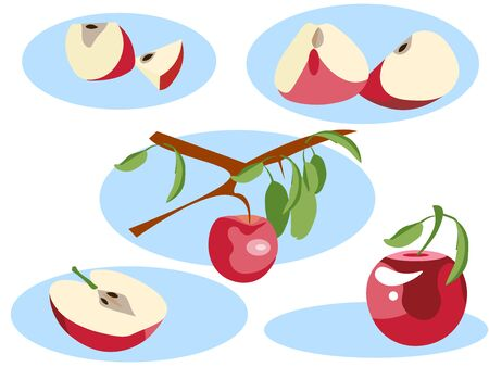 Apple in different portions. Whole, grows on a tree, half and slice. In minimalist style. Flat isometric raster