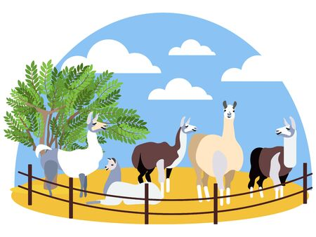 Seth, animals lama. Farming. In minimalist style Cartoon flat raster