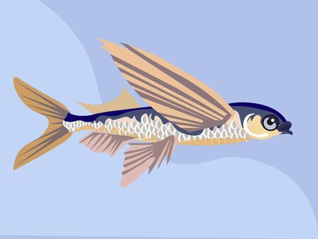 Flying fish isolated. In minimalist style. Cartoon flat vector.