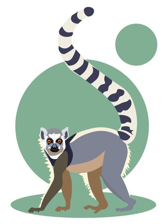 Animal lemur isolated on a green background. Flat style. Cartoon vector