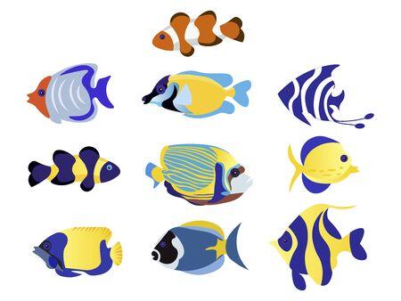 Exotic Fish Set animal raster illustration flat
