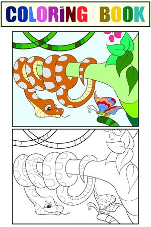 Pythonidae, snake resting on a tree. Set of coloring book and color sketch for example. Vector illustration. Ilustrace