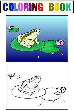 Children coloring and color toad, a frog is sitting on a water lily. Black and white. Cartoon raster