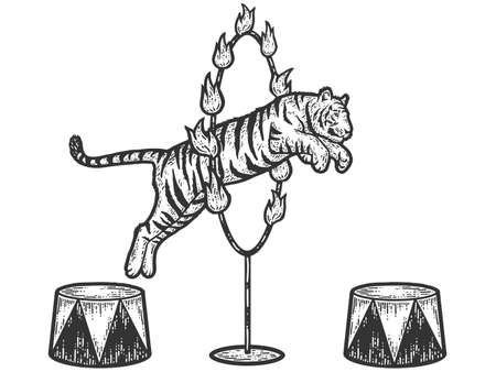 Circus, tiger jumping through a ring of fire. Sketch scratch board imitation. Black and white. Engraving vector illustration.