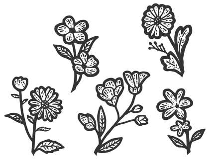 Set of isolated wildflowers. Sketch scratch board imitation. Black and white