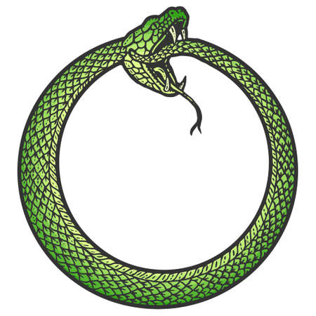Uroboros, snake coiled in a ring, biting its tail. Scratch board imitation. Black and white hand drawn image. 矢量图像