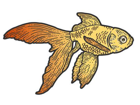 Gold fish. T-shirt apparel print design. Scratch board imitation. Color hand drawn image. 免版税图像