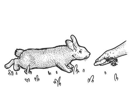 Man feeds rabbit with carrot. Sketch scratch board imitation. 矢量图像