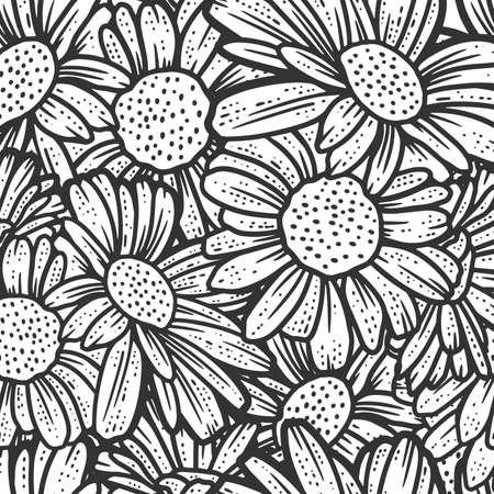 Seamless pattern, chamomile flowers. Sketch scratch board imitation.