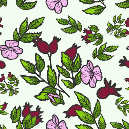 Seamless pattern rosehip bush. Sketch scratch board imitation. Color. Engraving vector