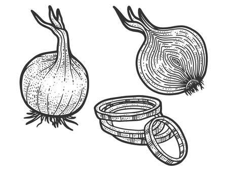 Set, onion in three types. Sketch scratch board imitation. Black and white. Engraving raster illustration.