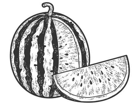Watermelon, sketch scratch board imitation. Black and white.