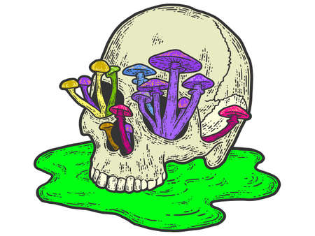 Human skull with growing mushrooms. Sketch scratch board imitation.  イラスト・ベクター素材