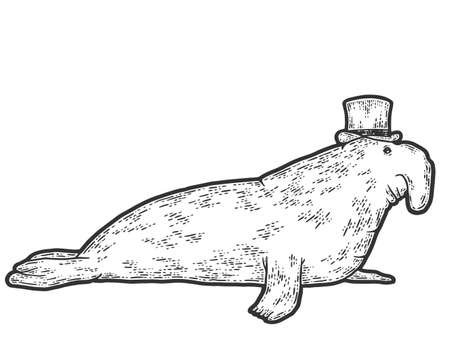 Elephant seal in hat. Sketch scratch board imitation. Engraving vector illustration.