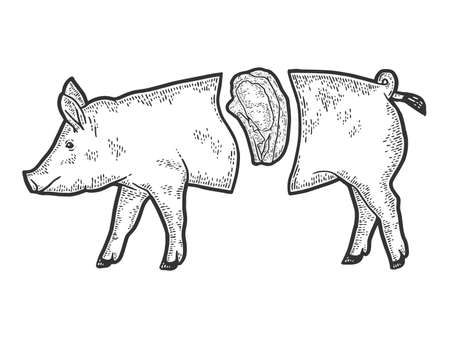 Showcase of the meat department. Pig carcass split, steak. Engraving raster illustration.