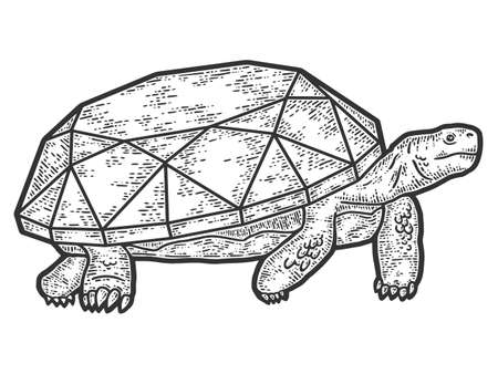 Turtle with a diamond. Engraving vector illustration. Sketch scratch board imitation.