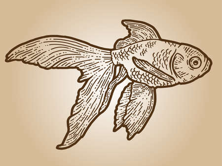 Goldfish. Engraving sketch scratch board imitation. Sepia hand drawn image. Stock fotó