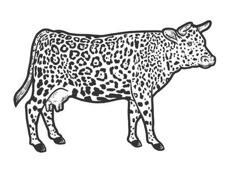 Hybrid cow, leopard fur color. Engraving vector illustration. Sketch.