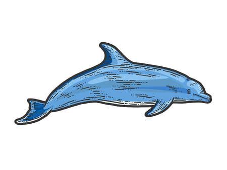 Dolphin, isolated animal. Sketch scratch board imitation illustration. 版權商用圖片