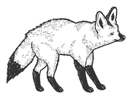 Bat-eared fox, African animal. Sketch scratch board imitation. Black and white.