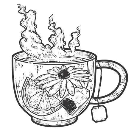 Herbal tea in a transparent cup. Sketch scratch board imitation coloring. Engraving vector illustration. Vektoros illusztráció