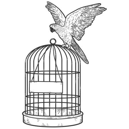 Parrot sits on a cage. Blank plate. Sketch scratch board imitation coloring. Illustration