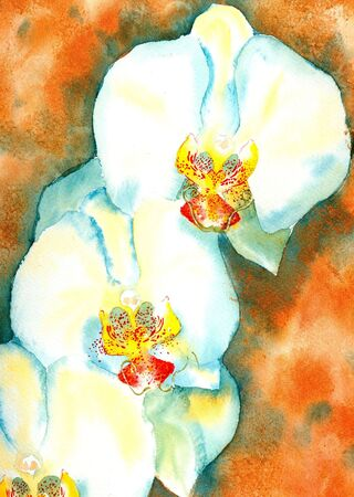 moody: White Orchid Watercolour Painting by Victoria Moody