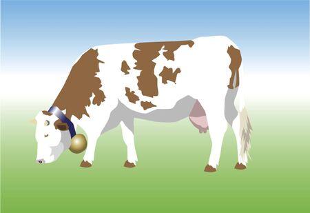 cattle grazing: Bavarian Cow Illustration