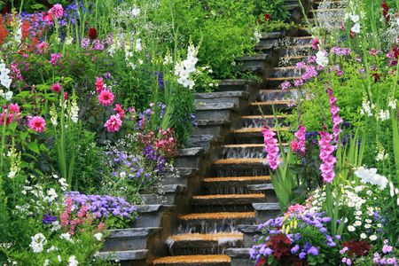 Flower water cascade Stock Photo - 4137634
