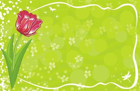 tulipe rouge: Tulipes rouge  Illustration