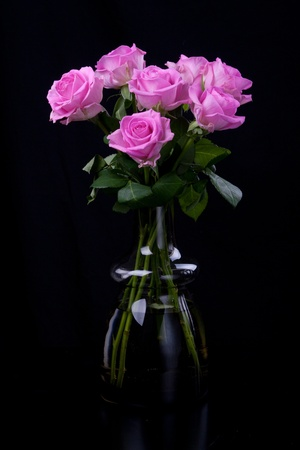 roses in vase: Pink roses