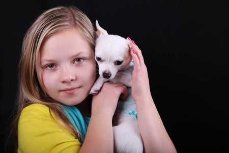 chihuahua puppy: Portrait of the beautiful girl with chihuahua  Stock Photo