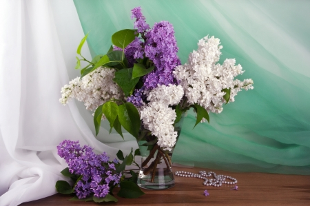 Still life of purple and white lilac in glass vase Stock Photo - 14019090