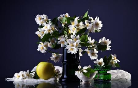 Jasmine photo
