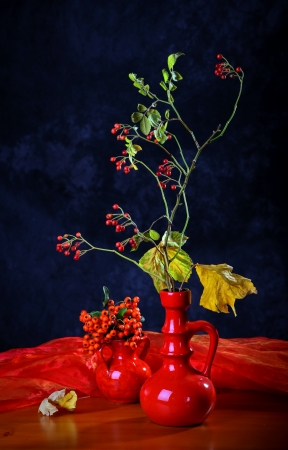 Still life with autumn Leaves and Berries Stock Photo - 15761273