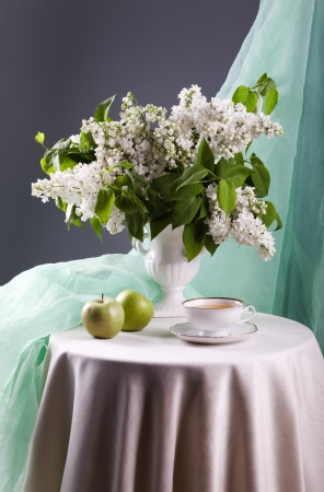 Still life with white lilac in vase  Stock Photo - 20230367