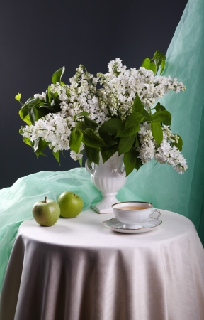 Still life with white lilac in vase  photo