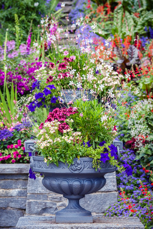 plant in pot: Flower water cascade at Mainau Island, Germany Stock Photo