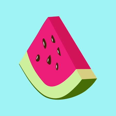 watermelon slice: Vector illustration of watermelon slice