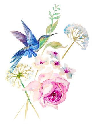 Humming-birds and blooming flowers Foto de archivo