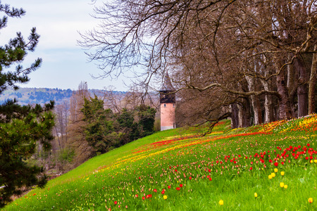 Colorfull spring flowers on the island of flowers Mainau, Lake Constance, Germany 스톡 콘텐츠