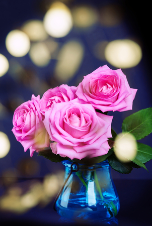 Bouquet of fresh pink roses with bokeh lights Reklamní fotografie