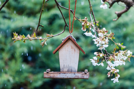 Little wooden Birdhouse  in Spring
