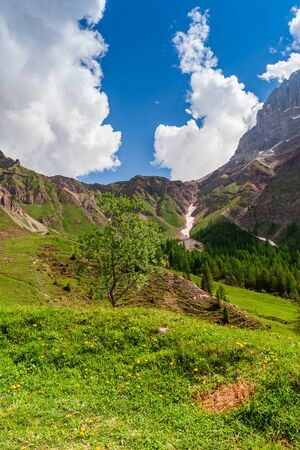 Summer landscape  in the italian Dolomites