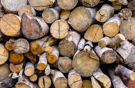 pile of logs: Pile of wooden logs.