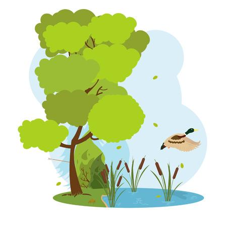 Wildlife scene. wild duck flying over the forest lake. vector Illustration
