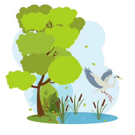gray herons: great heron flies over the pond. forest landscape with a lake and herons. vector.